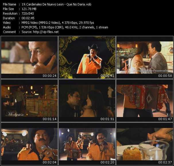 Cardenales De Nuevo Leon video screenshot