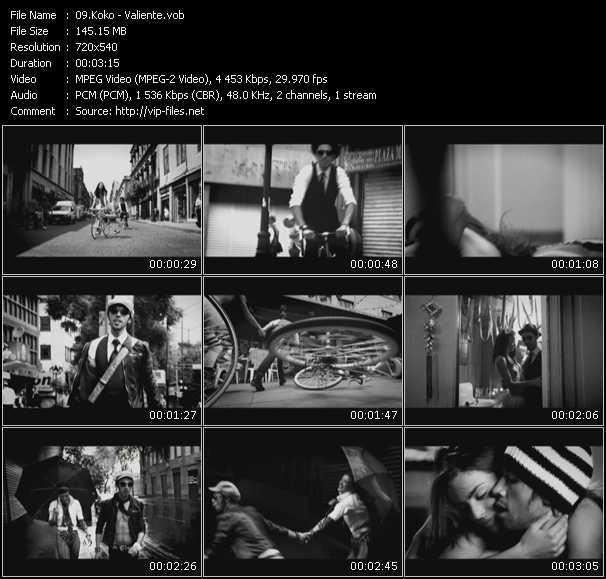 Koko video screenshot