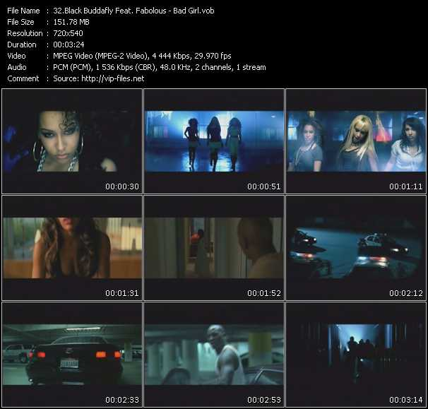 Black Buddafly Feat. Fabolous video screenshot