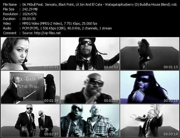 Pitbull Feat. Sensato, Black Point, Lil' Jon And El Cata video screenshot