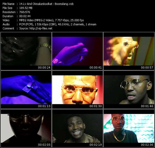 Lv And Okmalumkoolkat video screenshot