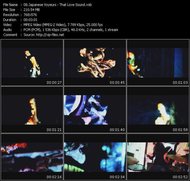 Japanese Voyeurs video screenshot