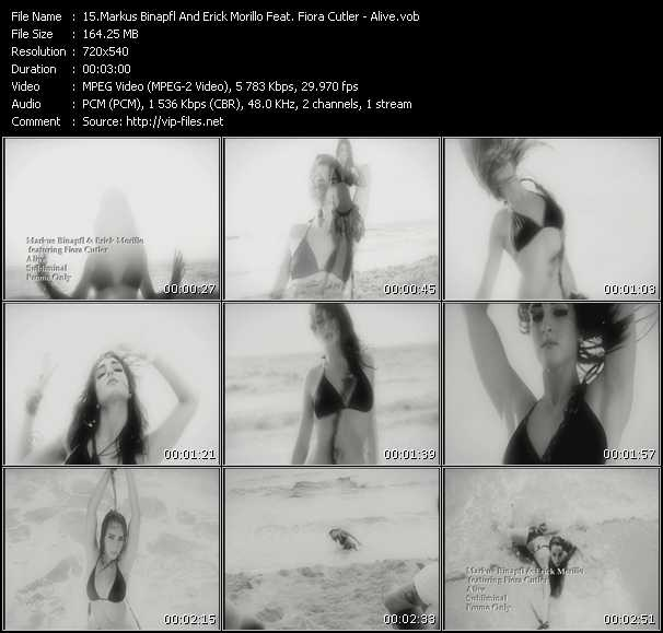 Markus Binapfl And Erick Morillo Feat. Fiora Cutler video screenshot
