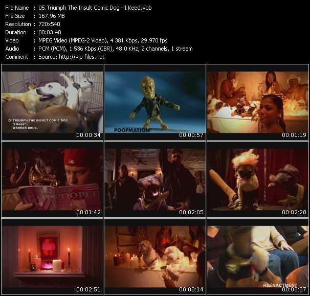 Triumph The Insult Comic Dog video screenshot