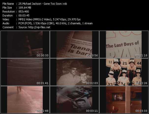 video Gone Too Soon screen