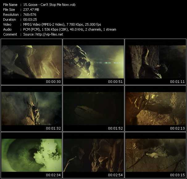 Goose video screenshot