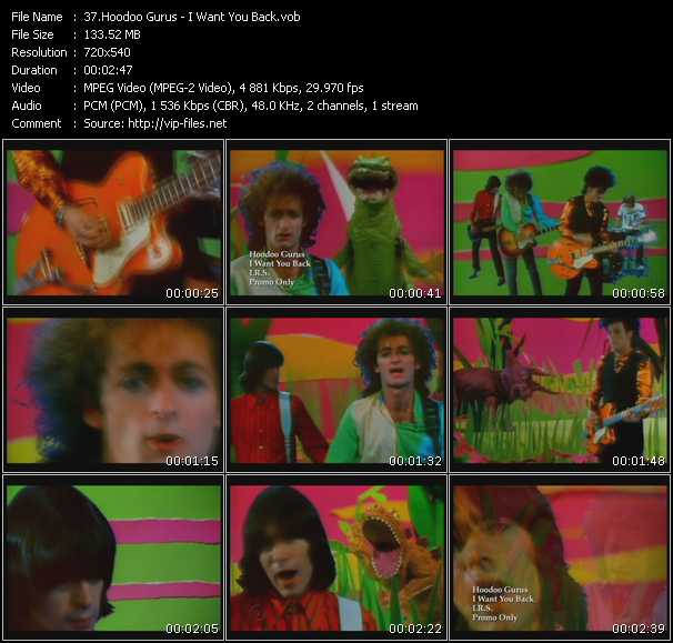 Hoodoo Gurus video screenshot