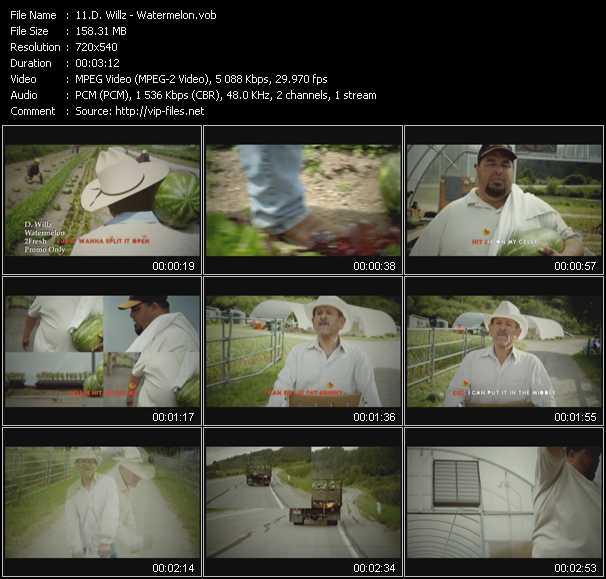 D. Willz video screenshot