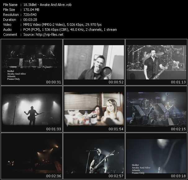 Skillet video screenshot