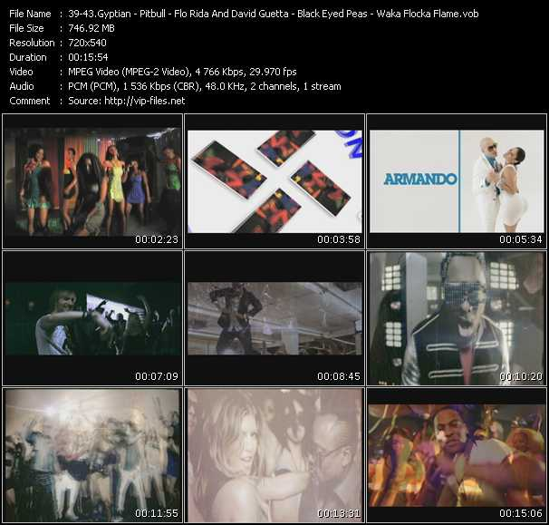 Gyptian - Pitbull - Flo Rida And David Guetta - Black Eyed Peas - Waka Flocka Flame Feat. Roscoe Dash And Wale video screenshot