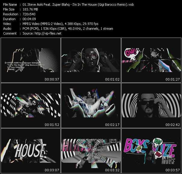 Steve Aoki Feat. Zuper Blahq video screenshot