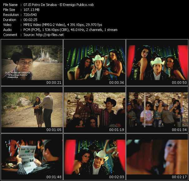 El Potro De Sinaloa video screenshot