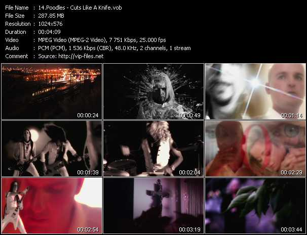 Poodles video screenshot