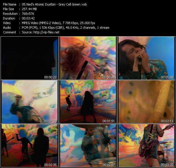 Ned's Atomic Dustbin video screenshot
