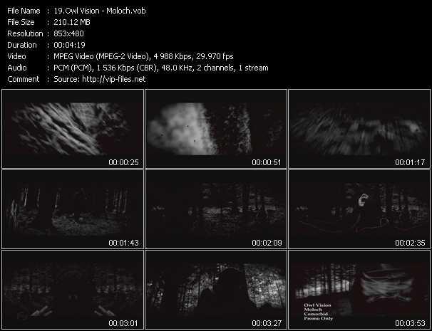 Owl Vision video screenshot