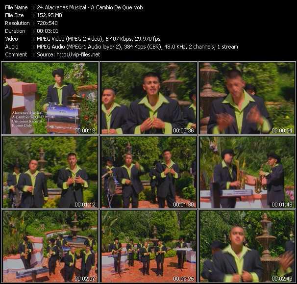 Alacranes Musical video screenshot