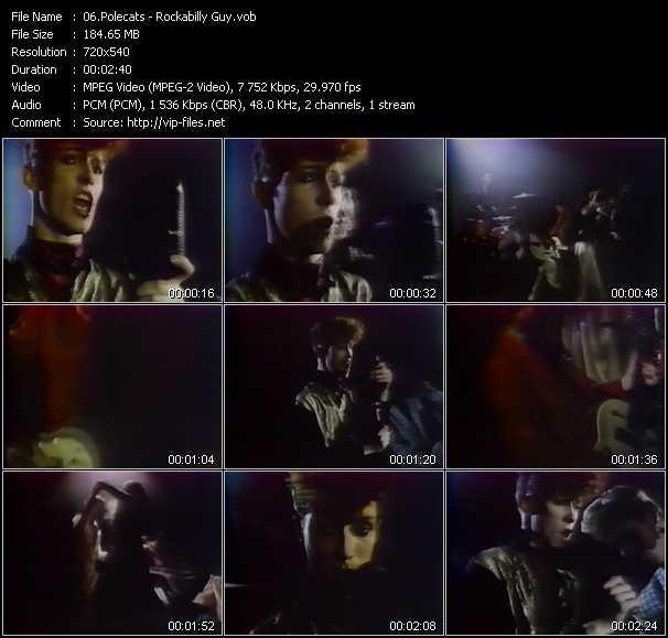 Polecats video screenshot