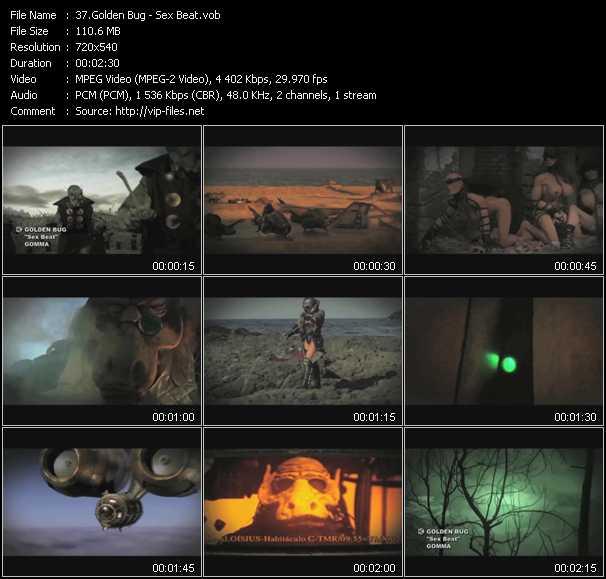 Golden Bug video screenshot