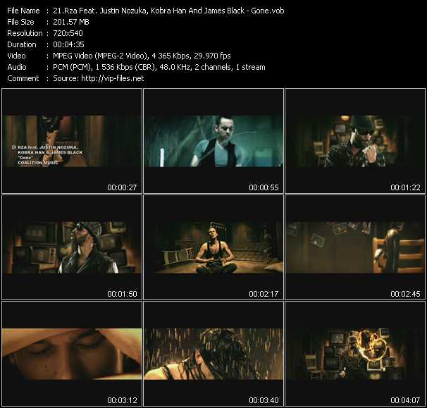 Rza Feat. Justin Nozuka, Kobra Han And James Black video screenshot
