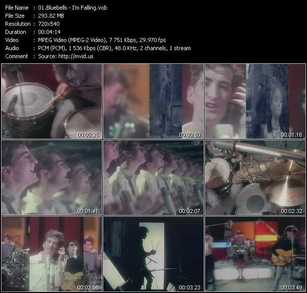 Bluebells video screenshot