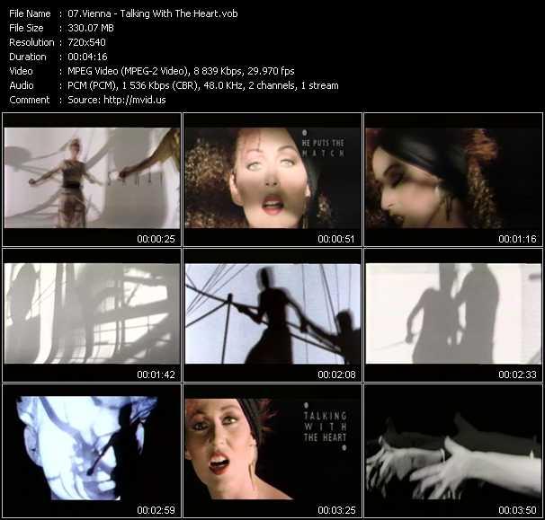 Vienna video screenshot