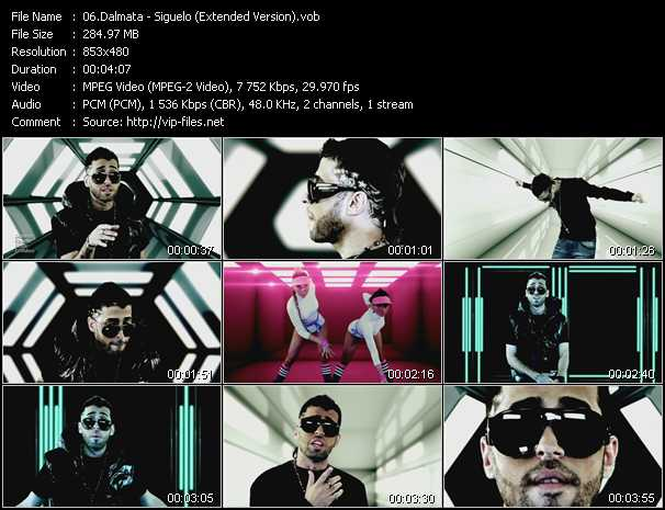 Dalmata video screenshot