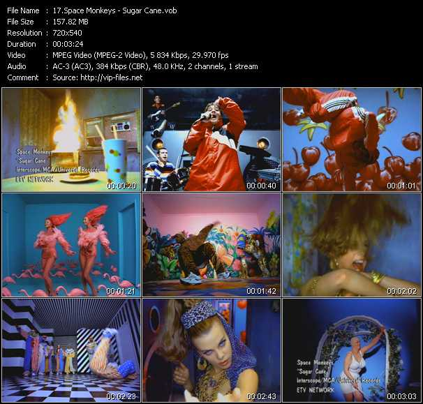 Space Monkeys video screenshot