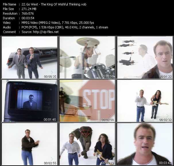 video The King Of Wishful Thinking screen