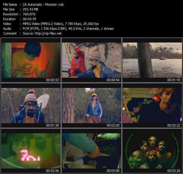 Automatic video screenshot