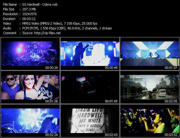 video Cobra screen