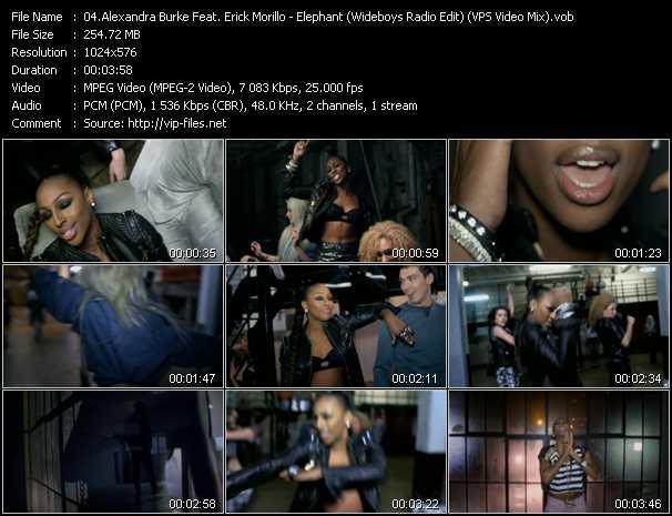 video Elephant (Wideboys Radio Edit) (VPS Video Mix) screen