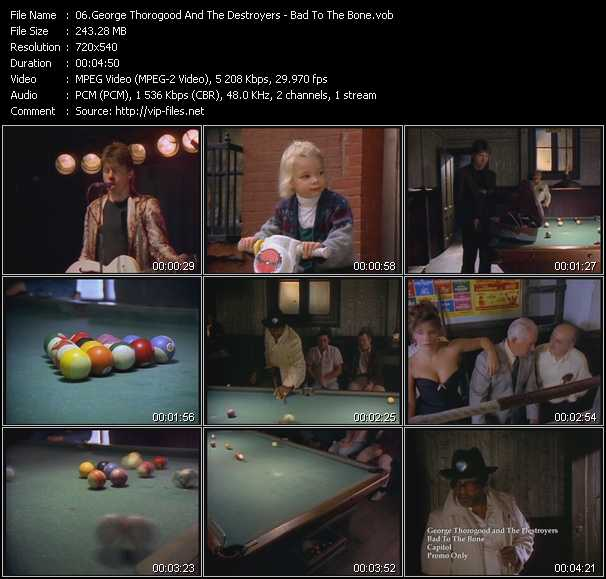 George Thorogood And The Destroyers video screenshot