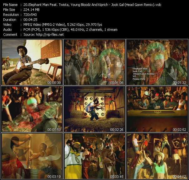 Elephant Man Feat. Twista, YoungBloodz And Kip Rich video screenshot