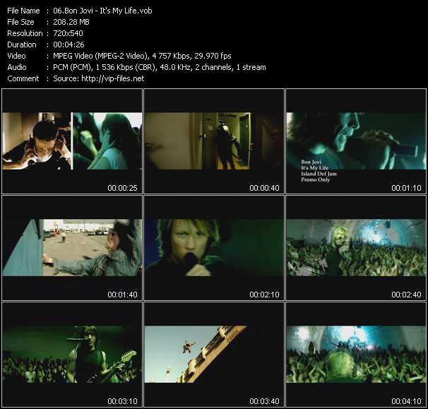 video It's My Life screen