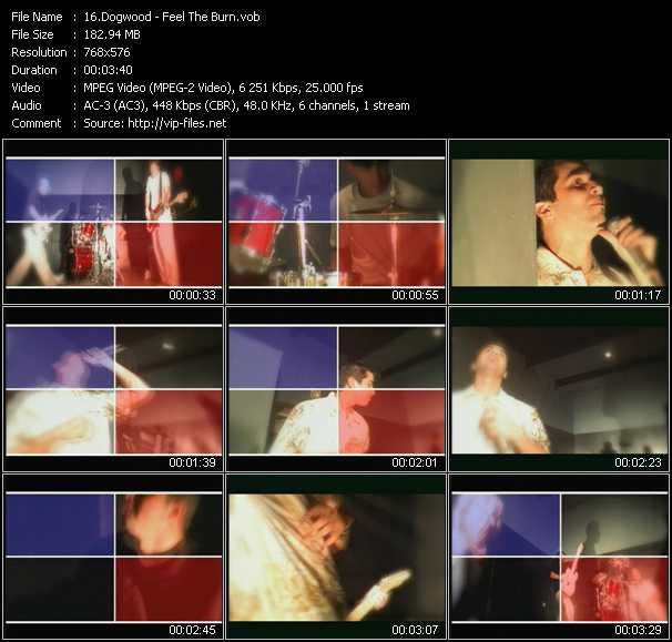 Dogwood video screenshot