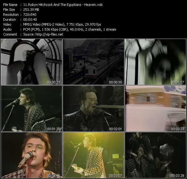 Robyn Hitchcock And The Egyptians video screenshot