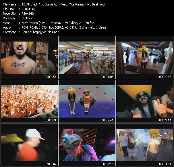 Afrojack And Steve Aoki Feat. Miss Palmer video screenshot