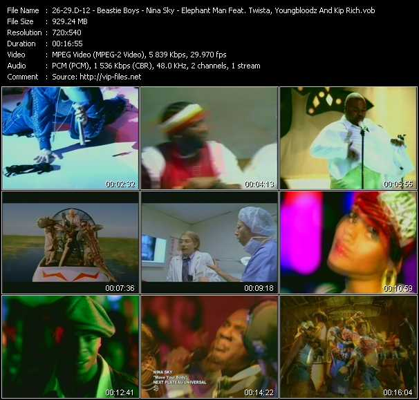 D12 - Beastie Boys - Nina Sky - Elephant Man Feat. Twista, YoungBloodz And Kip Rich video screenshot