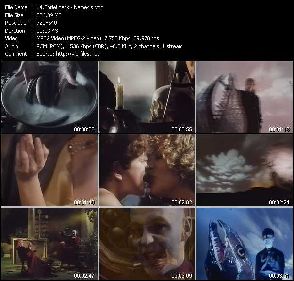 Shriekback video screenshot