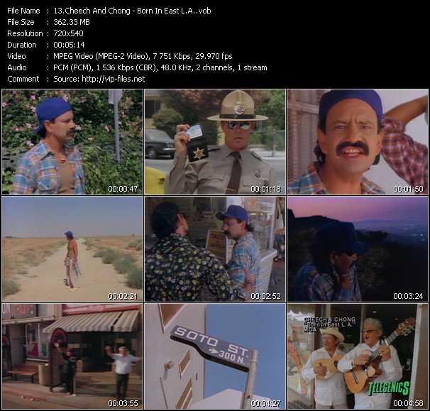 Cheech And Chong video screenshot