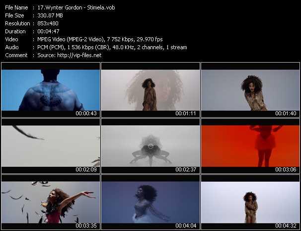 video Stimela screen
