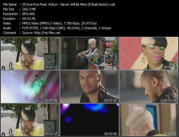 Rye Rye Feat. Robyn video screenshot