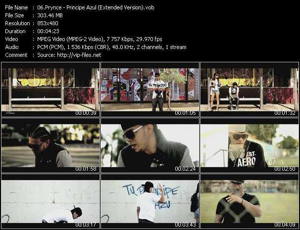 Prynce video screenshot