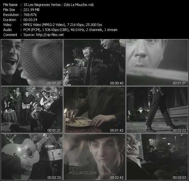 Les Negresses Vertes video screenshot