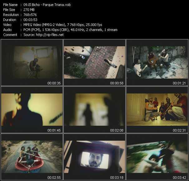 El Bicho video screenshot