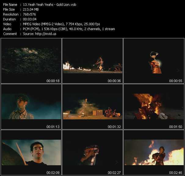 Yeah Yeah Yeahs video screenshot