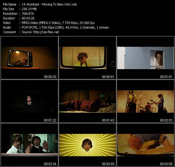 Wombats video screenshot
