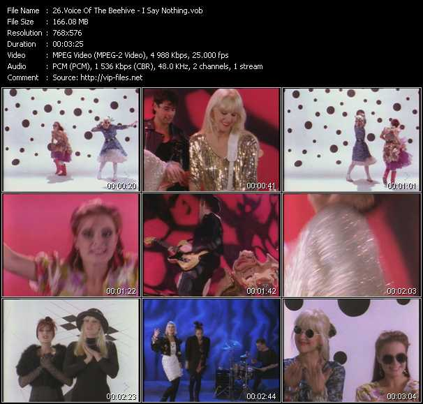 Voice Of The Beehive video screenshot