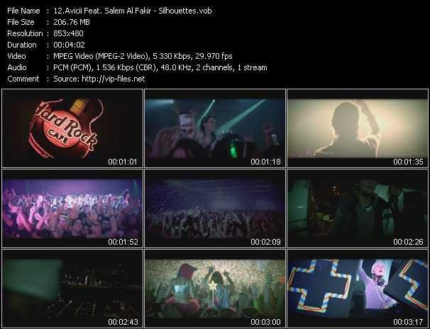 Avicii Feat. Salem Al Fakir video screenshot
