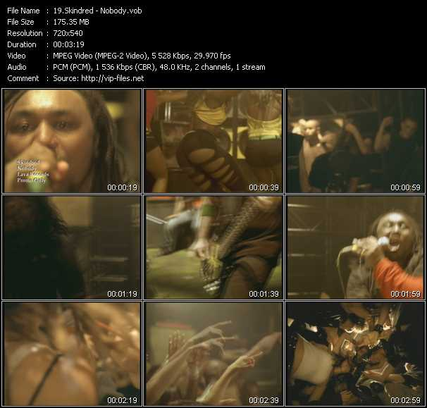 Skindred video screenshot